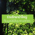 รายนามผู้ร่วมรักษาป่าใหญ่ผ่าน Bangchak – Cards ประจำปี 2559
