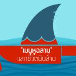 'เมนูหูฉลาม' แลกชีวิตนับล้าน