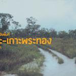โครงการการศึกษาวิจัยพื้นที่เกาะระ-เกาะพระทอง อ.คุระบุรี จ.พังงา