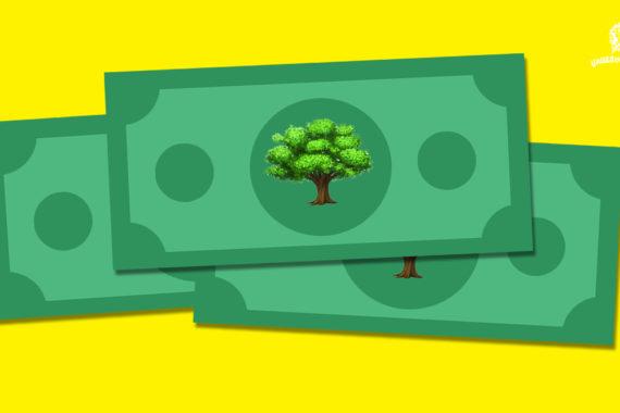 """""""พันธบัตรป่าไม้"""" กลไกการคลังในการช่วยเพิ่มพื้นที่ป่าเศรษฐกิจ"""