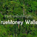 ร่วมรักษาป่าใหญ่กับ TrueMoney Wallet