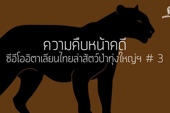 ความคืบหน้าคดี ซีอีโออิตาเลียนไทยล่าสัตว์ป่าทุ่งใหญ่ฯ # 3