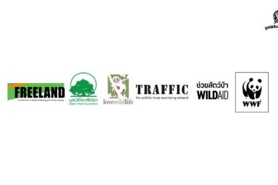 แถลงการณ์ร่วมของ 6 องค์กรอนุรักษ์ กรณีล่าสัตว์ป่าในเขตรักษาพันธุ์สัตว์ป่าทุ่งใหญ่นเรศวรด้านตะวันตก