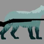 ความคืบหน้าคดี ซีอีโออิตาเลียนไทยล่าสัตว์ป่าทุ่งใหญ่ฯ # 5