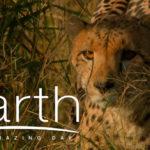 ชวนชมภาพยนตร์เรื่อง Earth One Amazing Day รอบพิเศษ 14 มีนาคมนี้