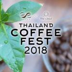 กาแฟรักษาป่าในงาน Thailand Coffee Fest 2018