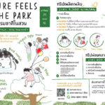 Nature Feels in the Park ตอน WATCH WALK BIKE ในสวนศรีฯ