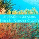 ออสเตรเลียทุ่มงบประมาณ ฟื้นแนวปะการังเกรตแบร์ริเออร์รีฟ