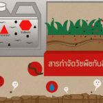 รู้รักษ์ป่า – สารกำจัดวัชพืชกับสิ่งแวดล้อม