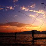 กินปลา-ยั่งยืน เรื่องเล่าที่เริ่มจากกว๊านพะเยา