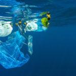 แคมเปญ งดใช้ถุงพลาสติก ช่วยลดขยะมากน้อยแค่ไหน ?