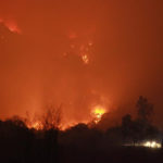 ผลกระทบจากไฟป่าดอยหลวงเชียงดาว  สัตว์ป่า พืชพรรณ เป็นอย่างไร