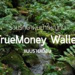 ร่วมรักษาป่าใหญ่กับ TrueMoney Wallet (แบบรายเดือน)