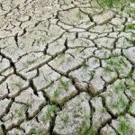 นักวิจัยเตือน การเปลี่ยนแปลงสภาพภูมิอากาศอาจมีผลกระทบที่คาดไม่ถึง