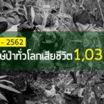 IRFเผยสถิติผู้พิทักษ์ป่าเสียชีวิตทั่วโลก 10 ปี 1,038 คน – และชวนอ่านความเห็นส่วนหนึ่งจากประชาชนอยากสนับสนุนผู้พิทักษ์ป่าด้านใดบ้าง