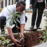 เอธิโอเปีย ปลูกต้นไม้ 350 ล้านต้นในหนึ่งวันเพื่อรับมือวิกฤติภูมิอากาศ