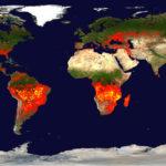 2 ทศวรรษที่ผ่านมา ไฟป่าเกิดขึ้นบ่อยแค่ไหน