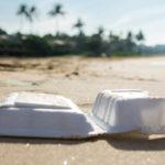 ขยะบนชายหาดทั่วโลกส่วนใหญ่มาจากอุปนิสัยการกินของพวกเรา