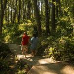 เมืองไม่ควรจะมีแค่สวนสาธารณะ แต่มันควรจะมีป่าอยู่ด้วย