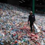 จุดจบของพลาสติก? นวัตกรรมขวดจากพืชที่สามารถย่อยสลายได้ในหนึ่งปี