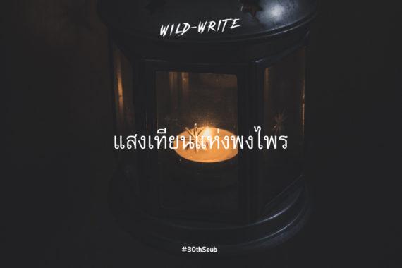 WILD-WRITE : แสงเทียนแห่งพงไพร