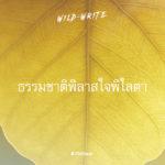 WILD-WRITE : ธรรมชาติพิลาสใจพิไลตา