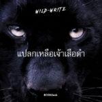 WILD-WRITE : แปลกเหลือเจ้าเสือดำ