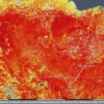 คลื่นความร้อนอาร์กติก: ตอนนี้เรารู้อะไรบ้าง?