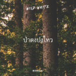 WILD-WRITE : ป่าดงปงไหว