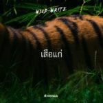 WILD-WRITE : เสือแก่