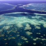 พบแนวปะการังที่สูงกว่าตึกเอมไพร์สเตตในเกรตแบร์ริเออร์รีฟ ประเทศออสเตรเลีย