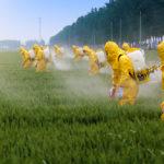 """รู้หรือไม่ 64% ของพื้นที่เกษตรกรรมทั่วโลกปนเปื้อนไปด้วย """"ยาฆ่าแมลง"""""""