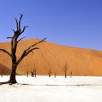 คาดอีก 80 ปีข้างหน้า ซีกโลกเหนืออาจมีฤดูร้อนนานถึง 6 เดือนต่อปี