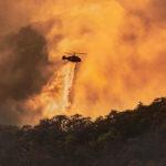 โลกยิ่งร้อน ป่ายิ่งลด – การเปลี่ยนแปลงสภาพภูมิอากาศมีผลต่อการเสียป่า