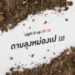 LIGHT IT UP EP 16 : ดาบลุงหม่องเป (2)