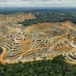 ไทยและประเทศเอเชียตะวันออกเฉียงใต้ ไม่ได้ร่วมลงนามร่วมสร้างพื้นที่อนุรักษ์ 30 เปอร์เซ็นต์