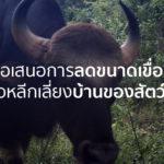 ขอให้พิจารณาลดขนาดอ่างเก็บน้ำคลองวังโตนด จ.จันทบุรี เพื่อรักษาถิ่นที่อยู่อาศัยของสัตว์ป่า